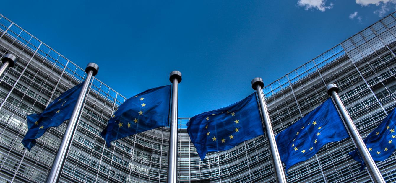 Europa zonder lidstaten – Europa's eigen inconvenient truth