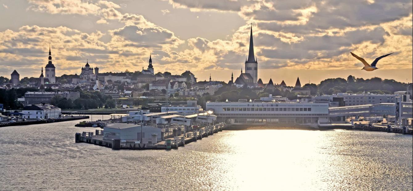 Estland: digitale pionier worstelend met buitenlandpolitiek