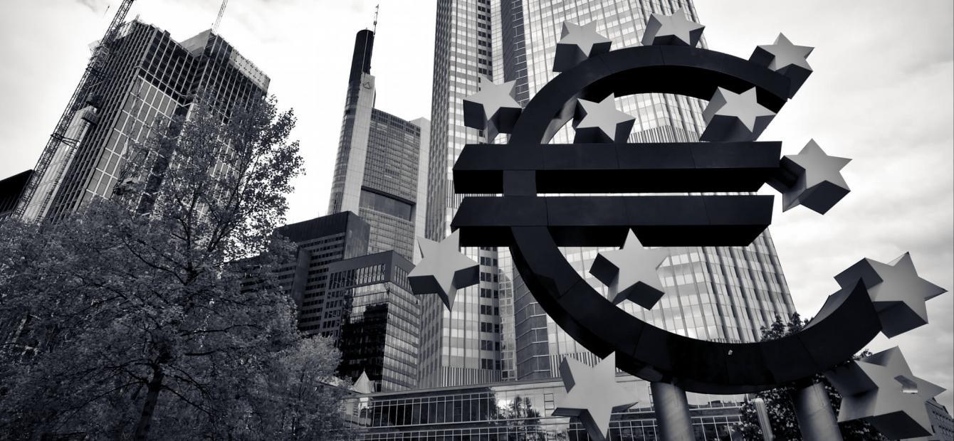 De euro: slikken, stikken of flexibiliseren?