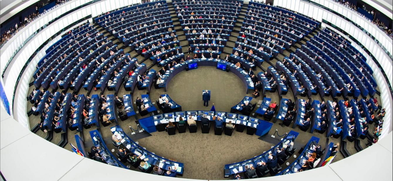 Op weg naar een volwassen Europees Parlement?